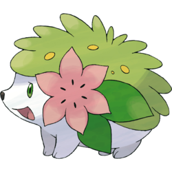 250px-492Shaymin-Land.png