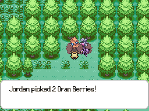berries1.png