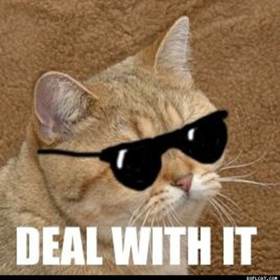 deal with it.jpeg