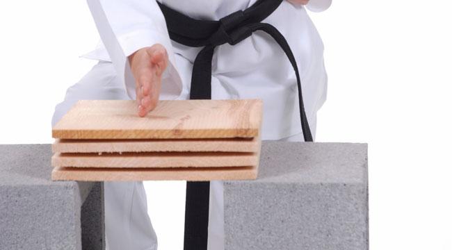 karate-snap-wood.jpg