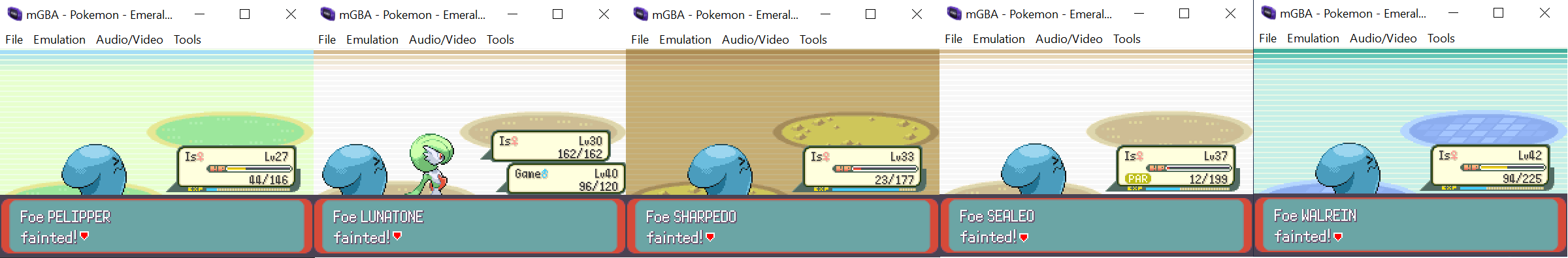 Wobbuffet Solo Collage.png