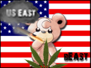 US East's flag
