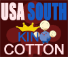 US South's flag